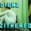 DIENZ ZITHERED