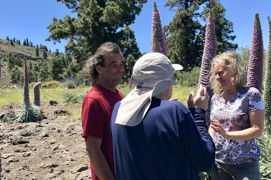 La Palma Filmreihe